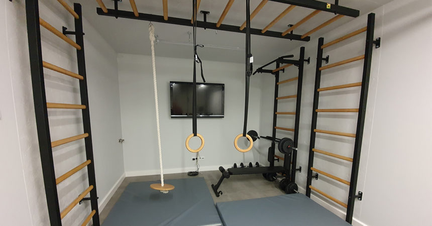 home gym wall bars